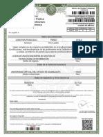 12000077 1918 Cedprof.pdf Cedula Profesional