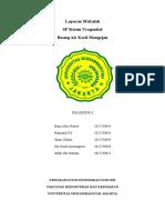 Cover laporan makalah SP uro.doc