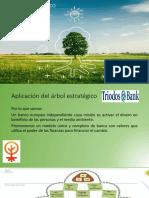 El Árbol Estratégico_09!06!2018