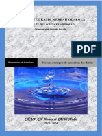 TPMDF.pdf