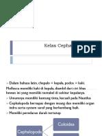 Kelas Cephalophoda.pptx