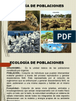 Diseño Ing-Ambiental Ppt Final