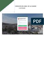 Manual de Usuario Servicios en Linea Caaasim