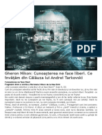 Căutarea Lui Andrei Tarkovski