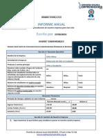 BRONCE Plantilla Informe Anual 2018 (2)