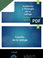 Anatomía y Fisiología de La Laringe