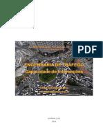 Apostila_Capacidade de Interseções_Rone.pdf