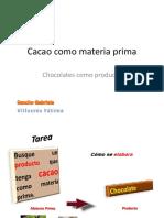 Cacao Materia Prima