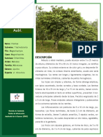 Manual de Reforestacion Vol3