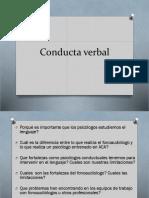 Diapositivas Cdta Verbal. E