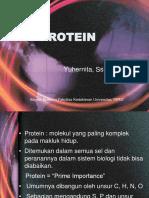 3. PROTEIN 16-1.pptx