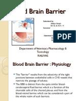 bloodbrainbarrier-130524121052-phpapp02