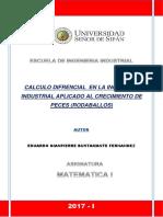 Calculo Diferencial en La Ingeniería Industrial Aplicado Al Crecimiento de Peces (Rodaballos)