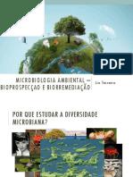 Microbiologia Ambiental – Bioprospecçao e Biorremediação