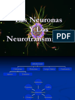 Neuron as y Neuro Transm i Sores