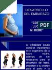 DESARROLLO DEL EMBARAZO