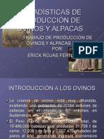Estadísticas de Producción de Ovinos y Alpacas
