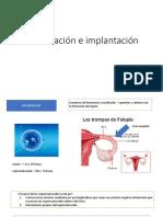Fecudacion e Implantacion