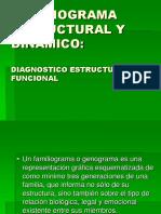 1540421217088_Familiograma Estrutural.ppt