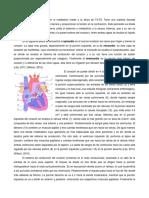 anatomia y fisiología del corazón
