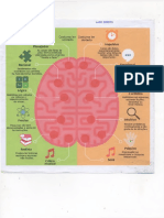 Imagem do cerebro