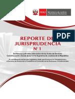 reporte de jurisprudencia