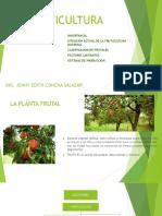 1fruticultura Nacional.ppt
