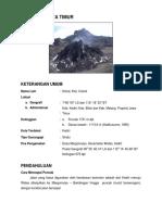 G._Kelud.pdf