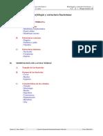 morfologia-y-estructura-bacteriana.pdf