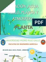 3° Clase SISTEMA PLANTA.pptx