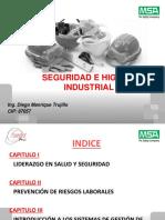 Seguridad e HIGIENE INDUSTRIAL HSEC AREQUIPA