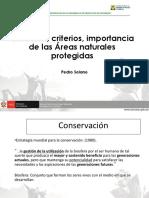 Creacion ANP - Pedro Solano.pdf