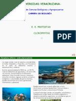 Intro Clorofitas
