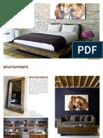 Environment Brochure Fall 2010