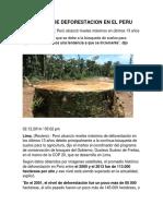 Ejemplos de Deforestacion (1)