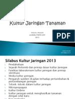 Kultur Jaringan _ ppt.pdf