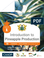 Intro to Pineapple Unit 1