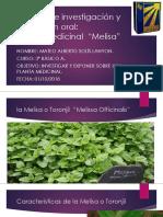 LA MELISA MATEO SOLIS 3º BASICO A.pptx