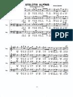 Stelutisalpinis _altro.pdf