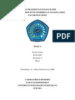 Cover Laporan Biomedik