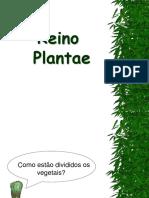 7ano Reinoplantae1 120930145652 Phpapp01