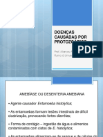doenascausadasporprotozorios-140521090815-phpapp02
