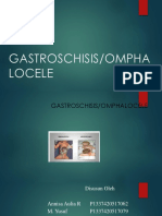 GASTROSCHISIS BARU.pptx