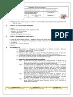 166562361-Ensayo-de-Carga-Puntual.doc