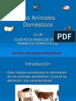 Presentacion Animales Domesticos