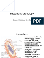 1-Bacterial Morphology.ppt