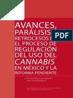 Avances, parálisis, retrocesos del proceso de regulación del uso del cannabis en México