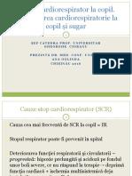 1.  RCP a VI 2016-17.pptx