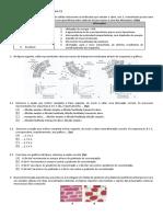 EXERCÍCIOS Biologia e Geologia 2.docx