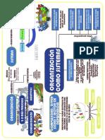 Organizaciones Como Sistemas